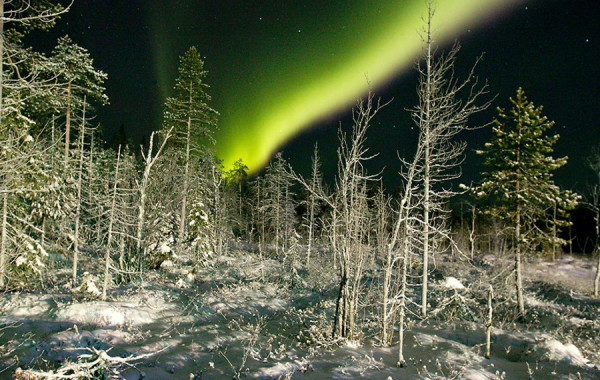 Levi, Fínsko