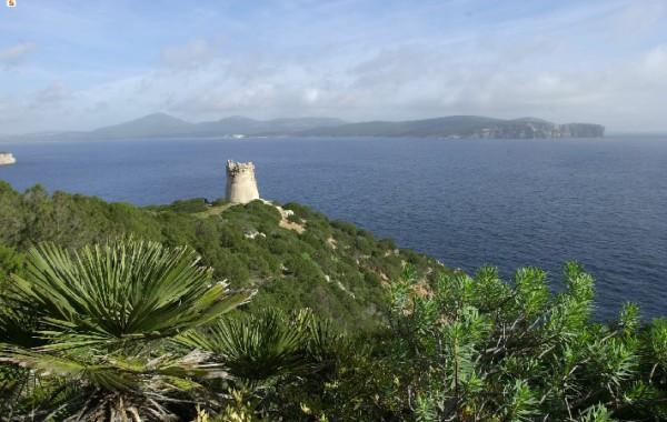 Sardínia, Alghero