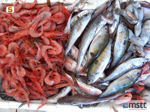 Sardínia, seafood