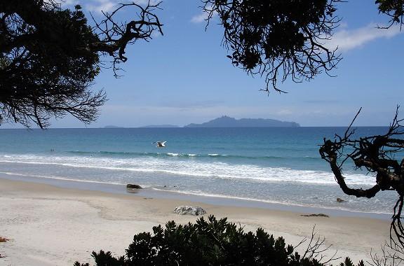Severný ostrov, okolie Aucklandu, Nový Zéland