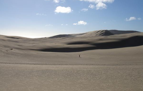Pieskové duny severne od Aucklandu