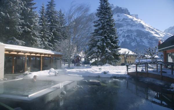Garten im Winter - Garden in Winter