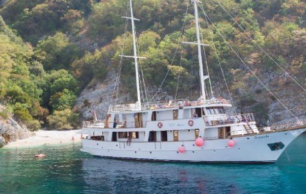 cruise nature & culture